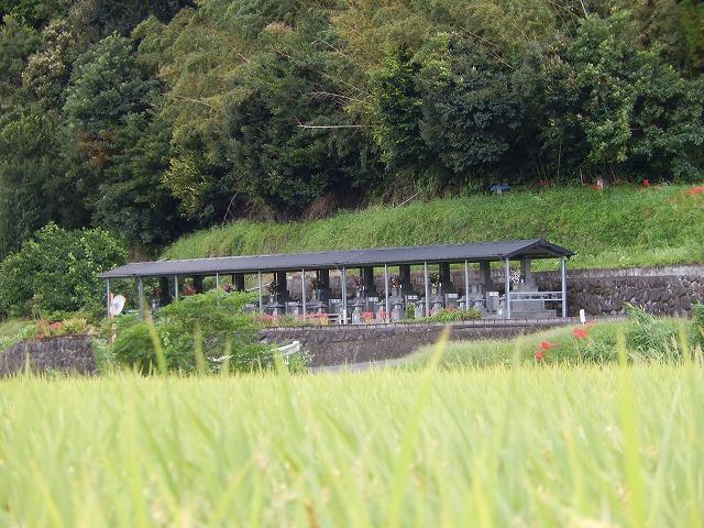 鹿児島 田園地帯に佇む墓地