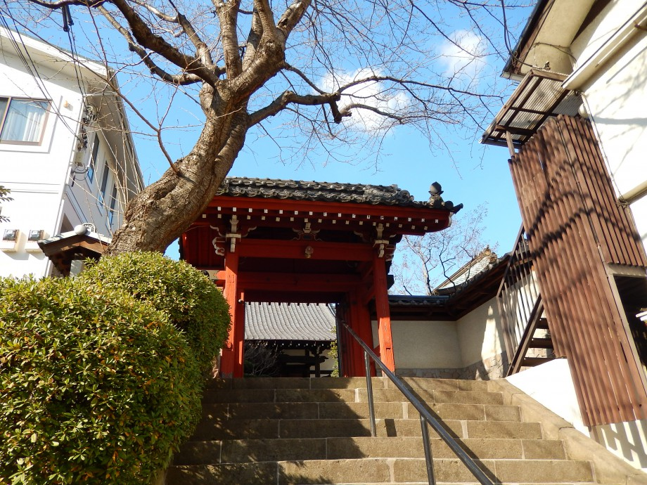移転、移築…歴史の奥を感じる黄檗宗のお寺