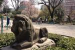 ライオン、桜、小学校