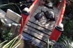 湯島聖天 心城院 弁天様のカメ