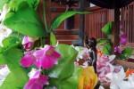 護国寺の花御堂