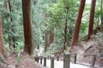 初夏の室生寺、720段を上って奥の院へ