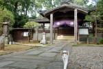 河越夜戦跡の寺猫