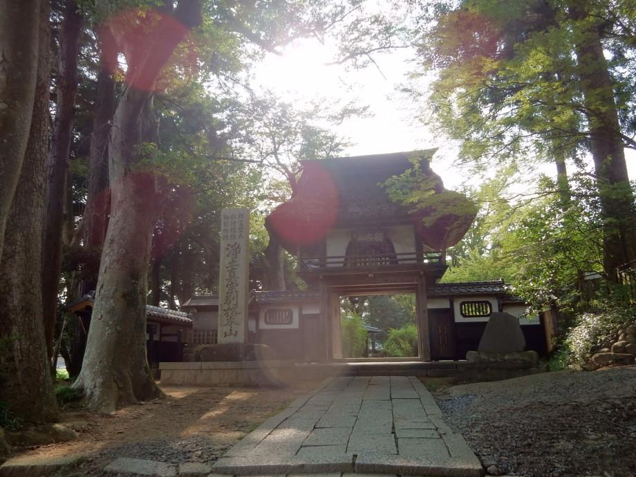 稲田禅坊 山門
