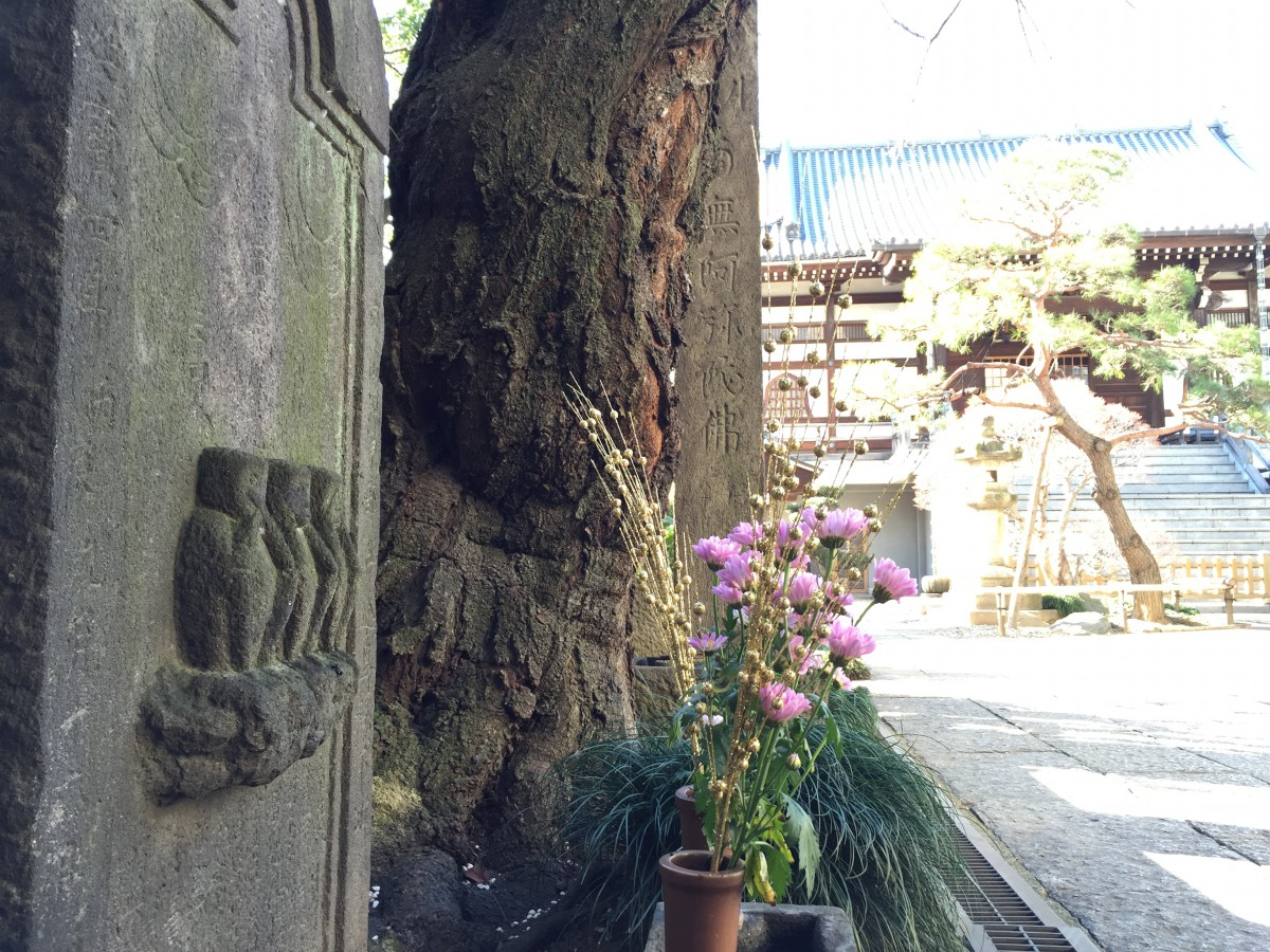 申年の庚申塔|喜久井町来迎寺