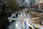 妙正寺川に流れる色
