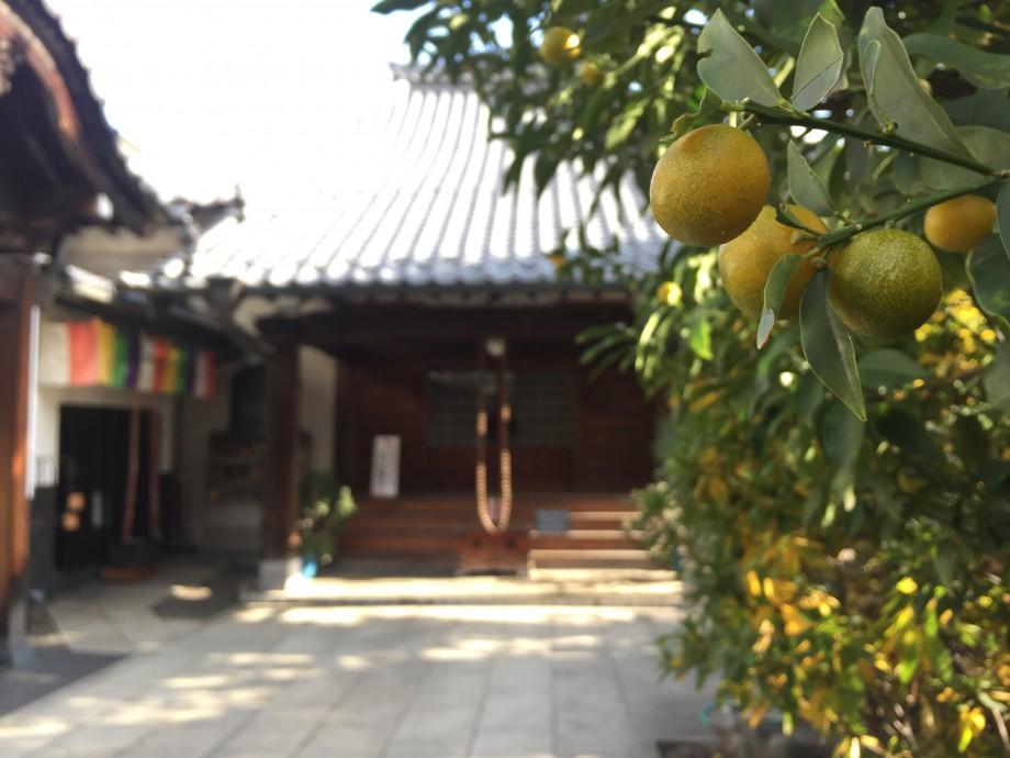 柑子と念珠と七福神