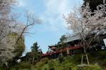 150年前、上野のお山で