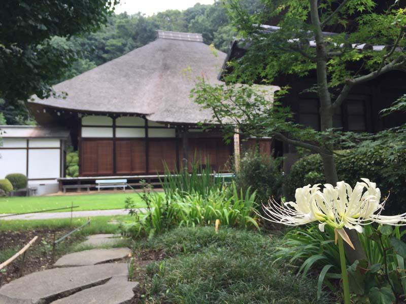 横浜にこんなお寺があるなんて