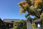 春彼岸中日の青空