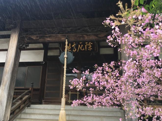 1年前の今日のお寺|平成最後のてらまちさんぽ