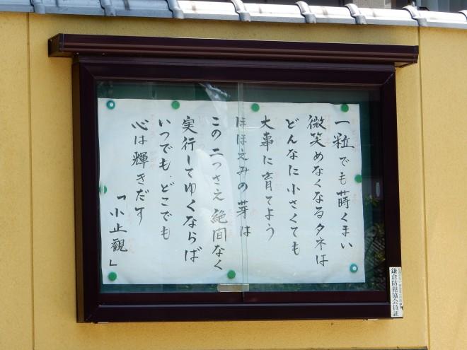 4年前の今日のお寺の掲示板|種と芽
