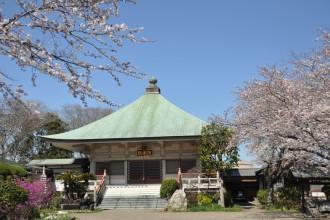 木更津のお花見の穴場|能蔵院